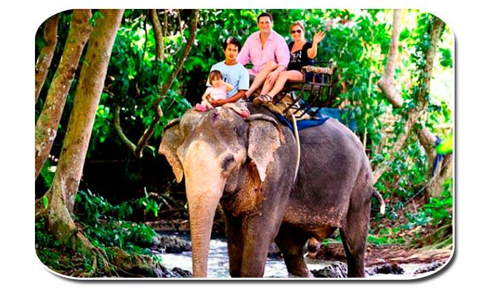 Когда ехать в таиланд с детьми