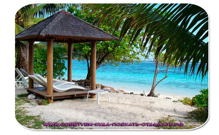 Когда лучше ехать в Шри Ланку отдыхать? По месяцам, отзывы - Советуем, куда поехать отдыхать