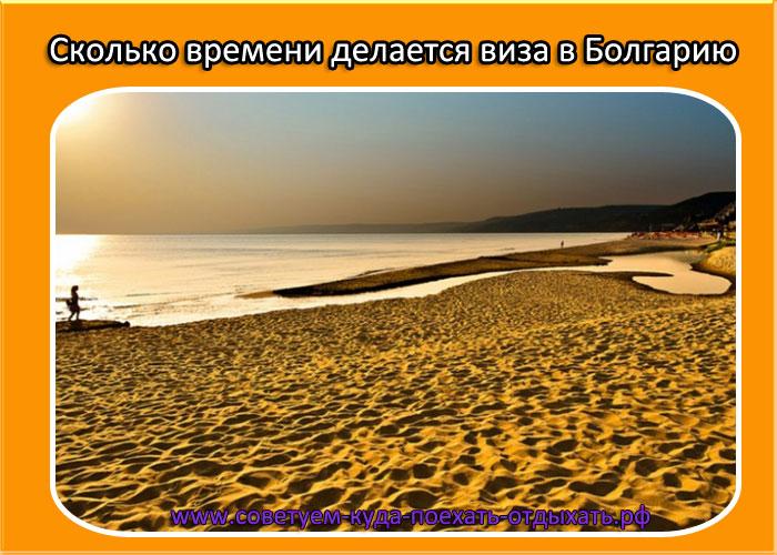 Сколько времени делается виза в Болгарию для россиян