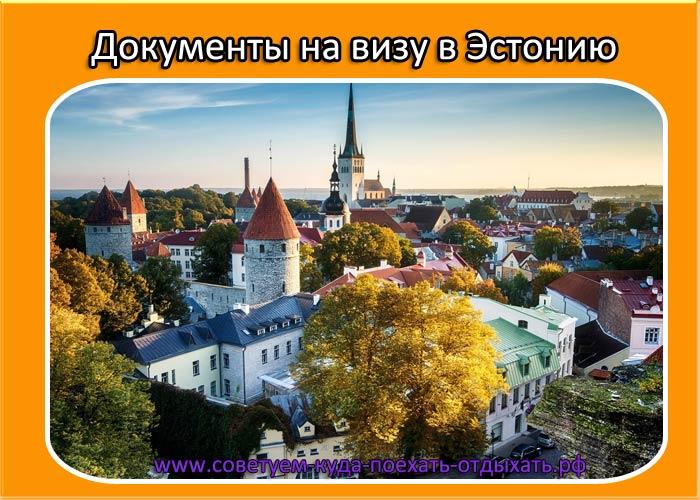 Документы на визу в Эстонию в 2020 году. Какие нужны, как подать самостоятельно